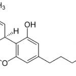Les effets psychotropes du THC